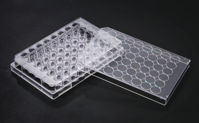 Cell Culture Plates
