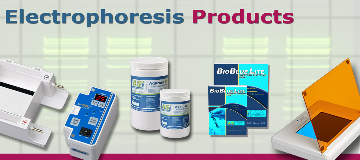 electrophoresis supplies